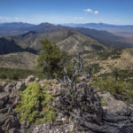 hiking the crest of the schell creek range along the basin and range trail