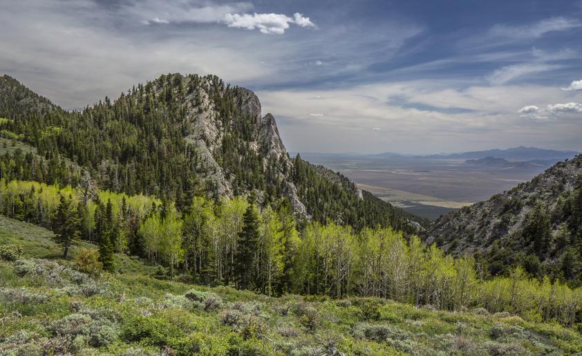 limestone rock formations in the egan range along nevada's basin and range trail