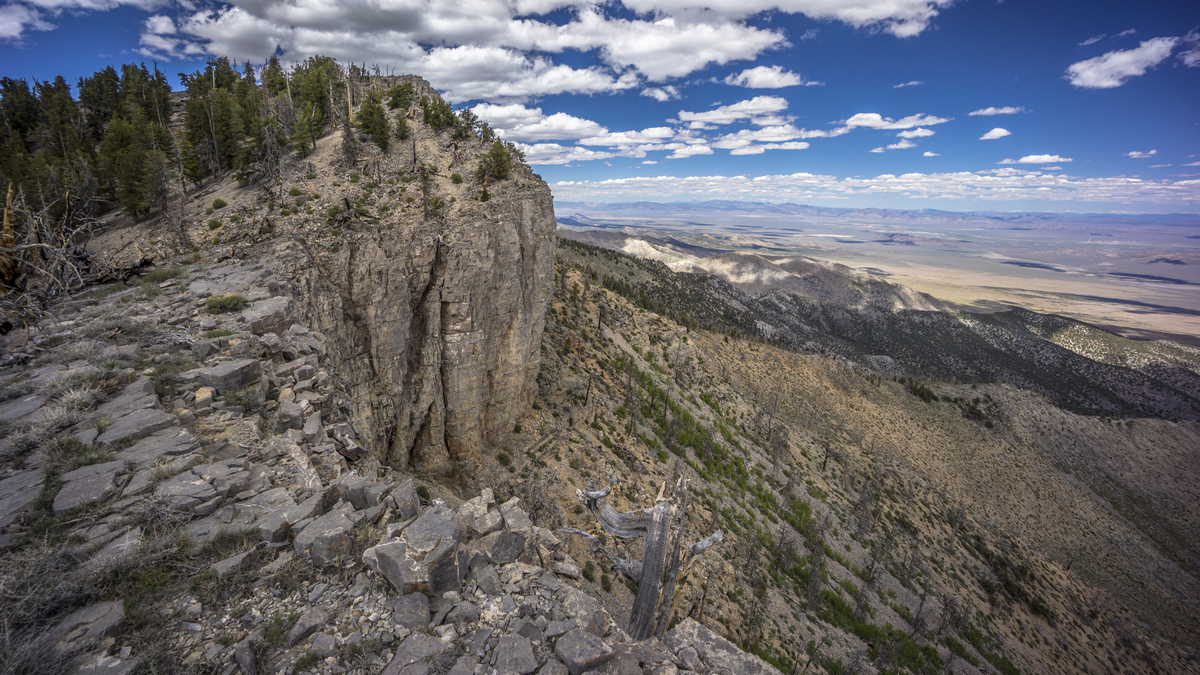 view from the crest of the grant range in nevada
