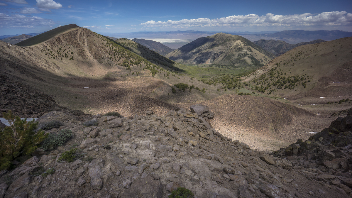view from the toiyabe crest trail