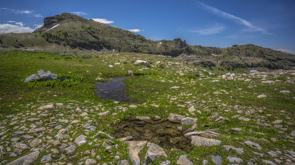 First Boulder Creek in the East Humboldt Range